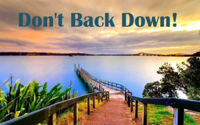 don't back down-orlando espinosa