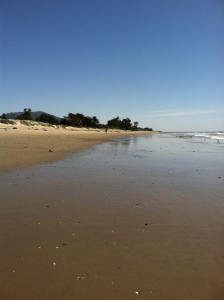 my son is in this photo...